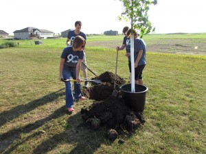 Tree Planting at Local Park